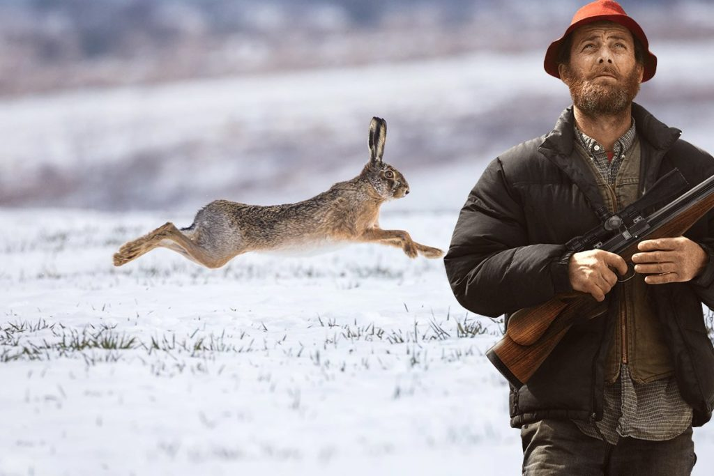 Охота на зайца: особенности, полезные советы